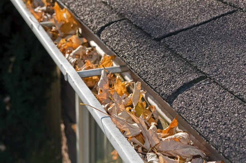 No matter how well-maintained your home may be, it will never run efficiently until you stop neglecting your gutters. Indeed, the New Jersey area is no stranger to harsh winds, bad weather, and other issues that can cause your gutters to become cluttered or otherwise malfunction.